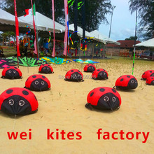 Free shipping high quality creepy soft ladybug kite can walking outdoor toys kite factory model aircraft assembly wei(China)