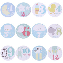 Baby Pregnant Women Monthly Photograph Stickers Fun Lovely Cartoon Pink/ Blue Month 1-12 Milestone Clothes Decoration Stickers(China)