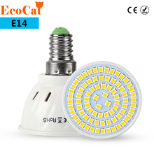 ECO CAT E14 LED lamp Spot light ceiling 220V 2835 SMD Heat-resistant Fireproof 48LED 60LED 80LED Bulb For Chandelier light(China)