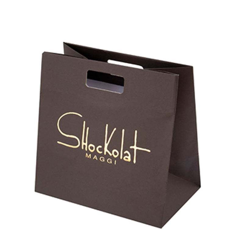 Gloss Laminated Printed Paper Bags with Rope Handles