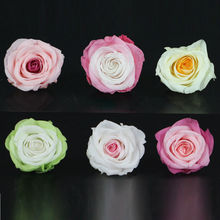 Imported DIY Present Preserved Fresh Flowers 8pcs/box 3-4cm Artificial Double Color Rainbow Rose Flower Wedding Venue Decor(China)
