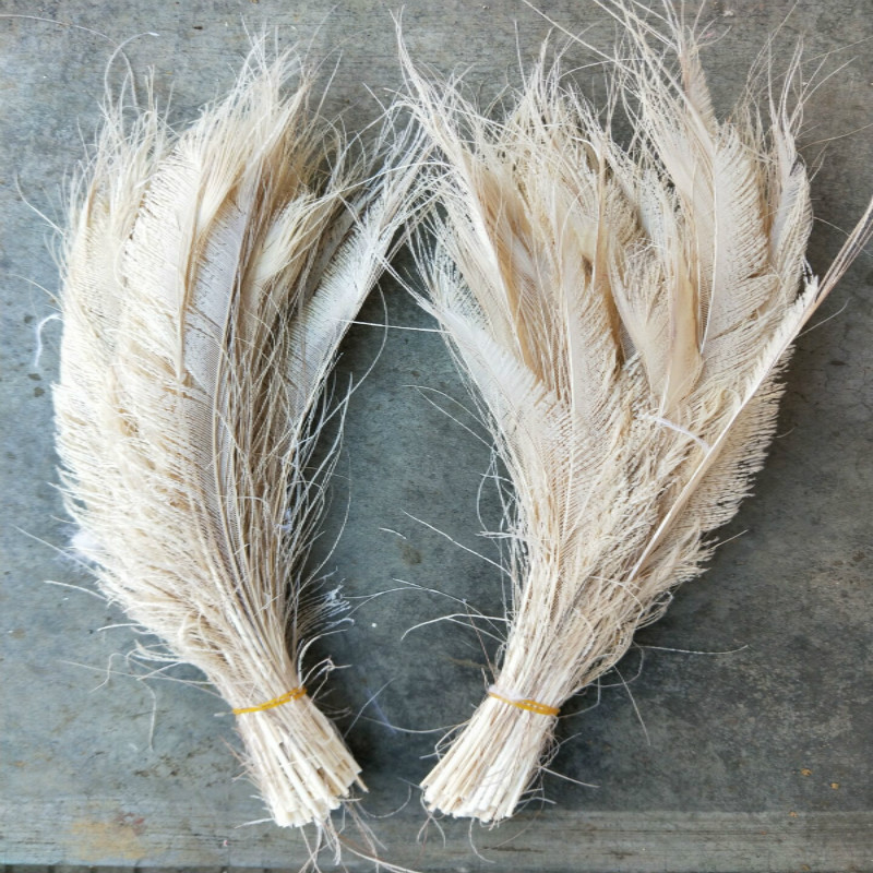 Wholesale beautiful beige peacock feather 10-50pcs length 25-30 cm 10-12 inches