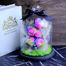 preserved flowers Valentine 's Day colorful eternal flower glass cover to send his girlfriend romantic gift variety of colors(China)