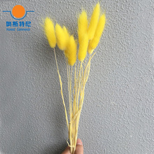 50pcs dried natural flower bouquets yellow color Lagurus ovatus bouquets&Uraria picta&rabbit tail grass flower bouquets bunches