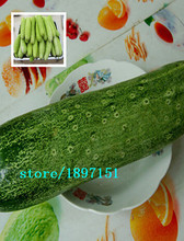 Big sale 100seeds/bag Original vegetable seeds cucumber seeds xinjin fourth research balcony potted cucumber