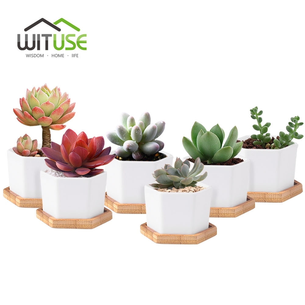 6pcs/set Modern Hexagon Flowerpots White Ceramic Succulent Plant Pot with Bamboo Stand Bonsai Planter Garden Supply Home Decor(China (Mainland))