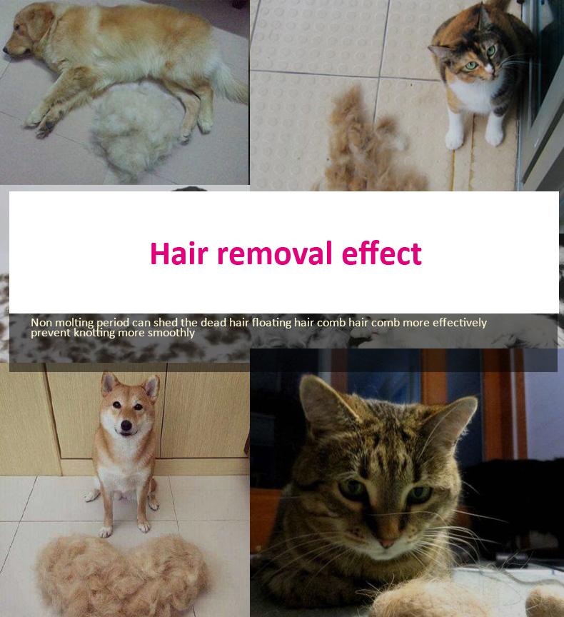 dog cat pet combs (17)