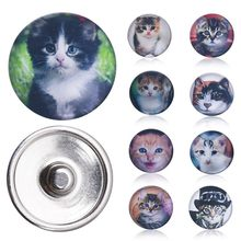 Pet Cat Assorted Color DIY Round Glass Snap Jewelry Button Size 18mm for Fashion Bracelets Bangles or Necklace