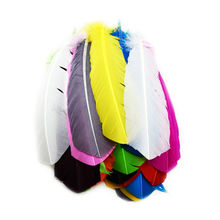 Cheap for Sale 12pcs Multicolor Dyed Loose Goose Feather Wedding Bouquet Decorations Indian Headdress Feathers IF1