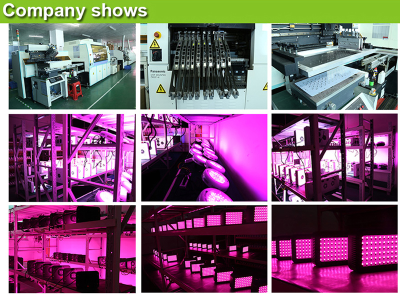 Whole hot seller 300W Led Grow Lights Panel 3W Led plant lamps for indoor Greenhouse hydroponic systems grow tent CEROHS (22)