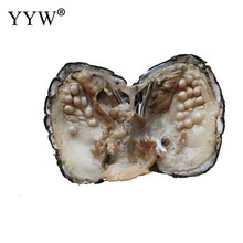 Vacuum Pack Oyster Wish Freshwater Pearl Mussel Shell With Pearl 2017 new arrival Mysterious Gift Surprise Vacuum pack pearl