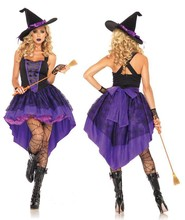 Sexy Adult Witch Costume Halloween Witch Dress Sexy Costumes For Women Halloween Christmas Costume Long Purple Swallowtail Dress(China)