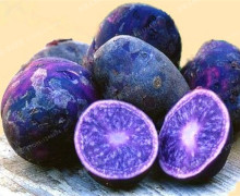 200pcs High Quality Potato Seeds Rare China High-nutrition Purple Potatoes Fruit And Vegetable Seeds For Home Jardin Planters