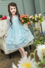 2017 Summer Toddler baby Girl lace Princess Dress kids embroidery floral Dress for wedding party elegant flower dress pink blue(China)