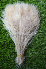 New! Free Shipping Sale 50 pcs / lot beautiful off white peacock tail feathers 10-12 inches Wedding, Party, Home.