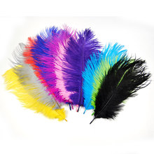 [10PCS] Length 20cm ~25cm Ostrich Feather for Fly Tying Herl Material Streamer Nymph Steelhead Indicater Multiple Color Assorted