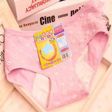 Buy Hot Comfortable Panties Mini Daisy Pattern Soft Female Physiological Briefs Leakproof Menstrual Period Lengthen Women Underwear