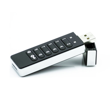encrypted USB flash dive AES 256 bit algorithm password keybaord input USB 2.0 disk Portable hard drive(China)