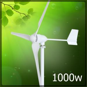 1000w wind turbine 300