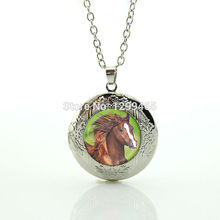Morocco fashion jewelry Unicorn leisure series essential hottest animal jewelry art picture glass dome horse locket pendant N982(China)