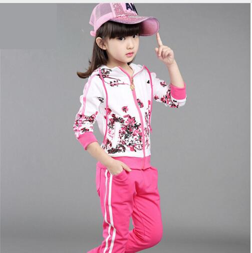 2017 New Spring&amp;Autumn Baby Girls Clothes Jacket Floral Kids Hoodies+Pants Kids Tracksuit Child Clothing Sets Girls Sport Suit <br><br>Aliexpress
