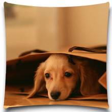 A dog in a shopping bag Pillows Case Cotton Polyester Sofa Car Cotton Cushion Cover Creative Decoration Square 5 size 9 style(China)