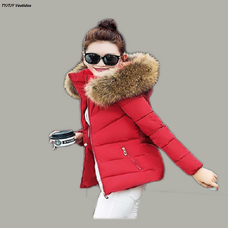 Park Fall 2016 fashion women winter jacket raccoon fur collar jacket thick hooded coat plus size women simulation casual jacket(China (Mainland))