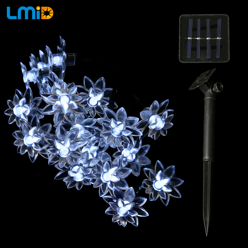 Solar LED Light (7)