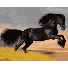 Urijk 1PC Canvas Painting Frameless Black Horse Oil Painting By Numbers Canvas DIY Digital Coloring Diamond Painting 40x50cm(China)