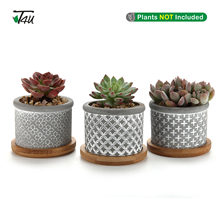 T4U 2.25 Inch Cement Succulent Planter Pot with Bamboo Tray Grey Set of 3 Small Concrete Cactus Plant Pot(China)