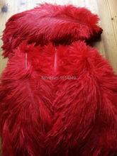 wholesale Quality 50pcs perfect Leniency Male red natural ostrich feather 12-14inch/30-35cm decorative diy(China)