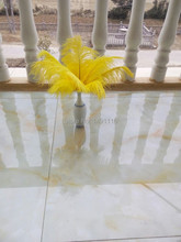 Hot! Free shipping wholesale 50pcs Yellow ostrich feather wedding decoration DIY10-12inches / 25-30CM(China)
