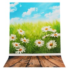 New Frameless Fresh Daisy Flower Pattern Silk Poster Decor Painting Photography Poster For Home Room Decoration 900x600mm