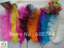 Free Shipping 100pcs/lot 12-14 inches 30-35cm mix 2 color ostrich drab feather ostrich plume