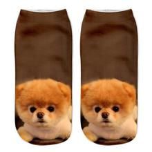 MUQGEW New Arrival Cute 3D Dogs Imitation Printed Women Socks Youthful Casual Sock Cute Dog Novel Style Unisex Low Cut Ankle Sox(China)