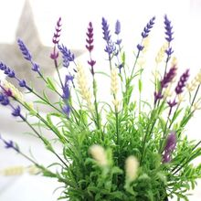 Artier Direct Lavender 4 - Color Simulation Flower Export Fake Flower Wedding Home Decoration Foreign Trade MW20201