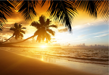Custom 3D photo wallpaper, sunset beach, coconut trees scenery for the living room bedroom TV background wall papel de parede
