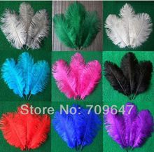 New! 100pcs/lot Real Ostrich Drab Feathers 20-25 cm / 8-10 Inch Colour Optional FREESHIPPING(China)