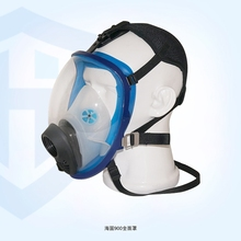 Sea -end full face mask respirators solid HG900 Windows pure silicone masks large(China)