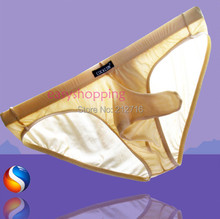 Mix-Colors Men's Super Sexy Comfortable Mesh Bikini Pouch Long Penis Sleeve Smooth Briefs Panties Underwear M/L/XL/XXL