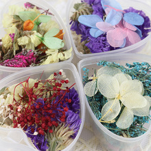1 Box Mixed Dried Flowers Nail Art DIY Glass Bottle Decor Preserved Flower With Heart-Shaped Box DIY Nail Art Decorations(China)