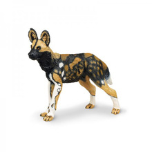 Original genuine Animal Lycaon pictus Dog Model Collectible figurine kids educational Figure toy gift