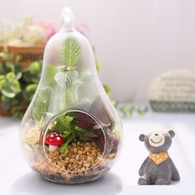 HOT! Home Decor Pear Crystal Vase Planter Terrarium Container Hydroponic Pot HXP001