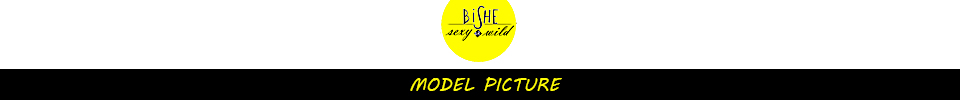 BiSHE model picture