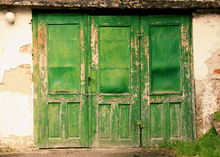 HUAYI Art Fabric Photography backdrop Green Wooden Door Photos For Studios backdrop Old Shabby Door Wood Background D-3812
