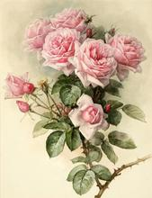 2017 diy 5d cross diamond painting stitch Full  bouquet pink roses picture home decor diamond Painting diamond  YZ046h