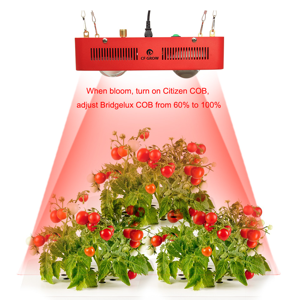 Citizen Bridgelux COB led grow ligth -11