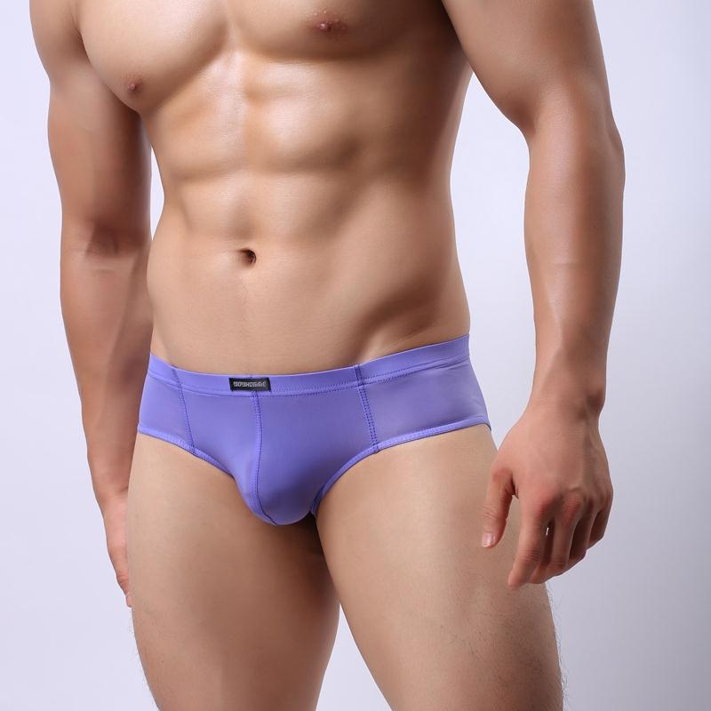 WH43 Men Sexy Mesh Transparent Brief Nylon Ice Silk Underwear Shorts Briefs JJSOX(China)
