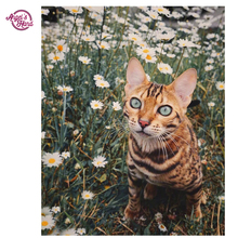 ANGEL'S HAND 5D cat Full Square Diamond Painting Diamond Mosaic picture of rhinestone Small daisy Diamond Embroidery Big ear cat(China)