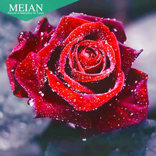 Meian,Full,Diamond Embroidery,Flower,Rose,5D,Diamond Painting,Cross Stitch,3D,Diamond Mosaic,Needlework,Crafts,Christmas,Gift